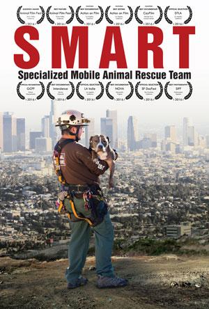 smart-dvd-3